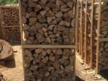 Beech Firewood - photo 1