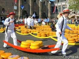 EU Integration Center предлагает бизнес – туры в Нидерланды - фото 3