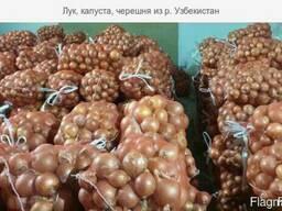 Лук, капуста, огурцы, консервация из Р. Узбекистан