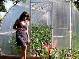 Sale of greenhouses from the manufacturer in the Republic of Belarus